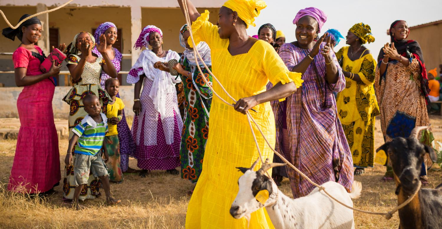 A woman leads two goats past a cheering group of women and children. USAID | Yaajeende (Senegal)