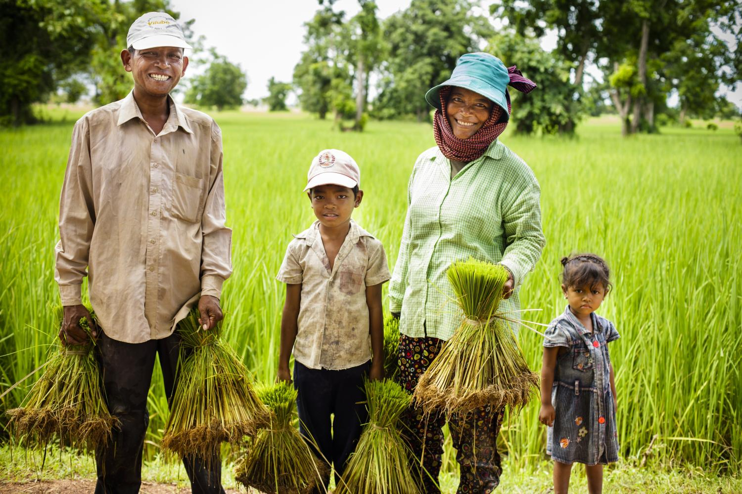 Cambodian farmers are increasing their yields as well as their incomes with help from Feed the Future. The whole family benefits from the added income and nutrition. (Fintrac Inc.)