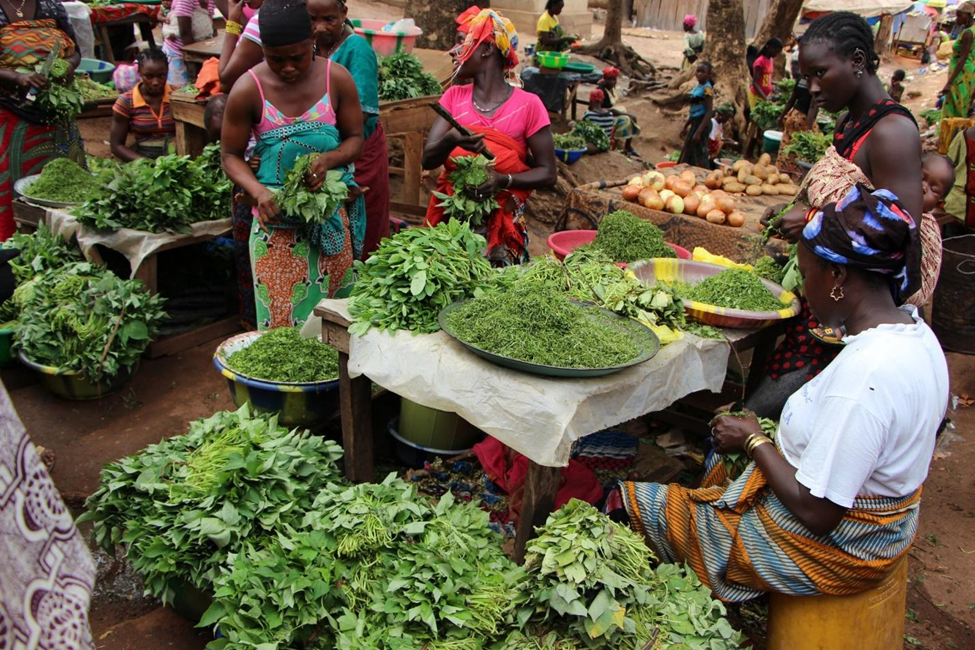 Three women organize different plants at a market.