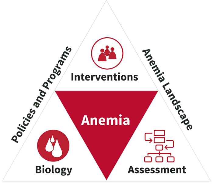 Triangle graphic showing all five sections of the Anemia Toolkit.